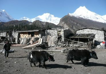 trek-around-manaslu-region