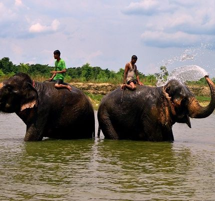chitwan-national-park-tour