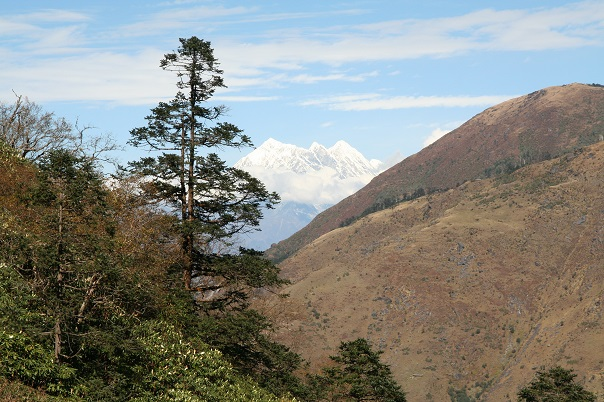 arun-valley-salpa-bhanjyang-trek