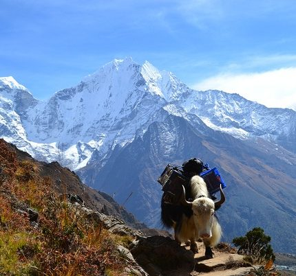 everest-base-camp-trip