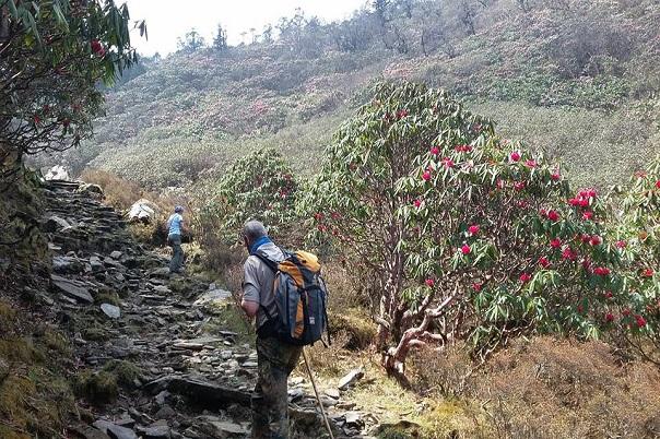 salpa-bhanjyang-trek